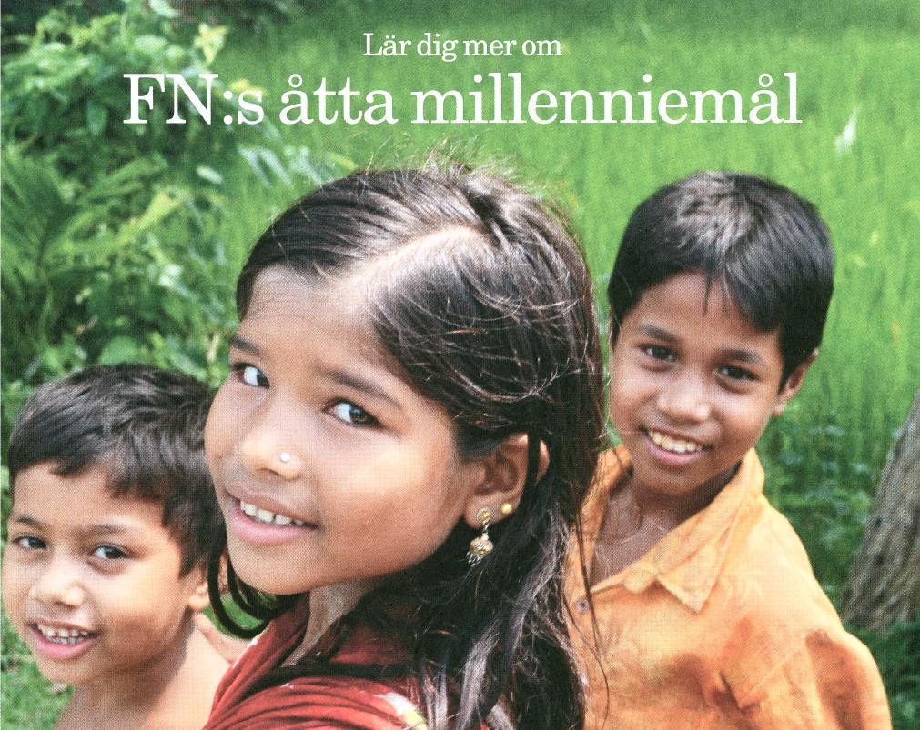 Om millenniemålen för unga